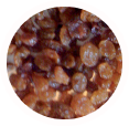 Orange River Raisins